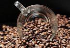 Tout savoir sur le grain de café